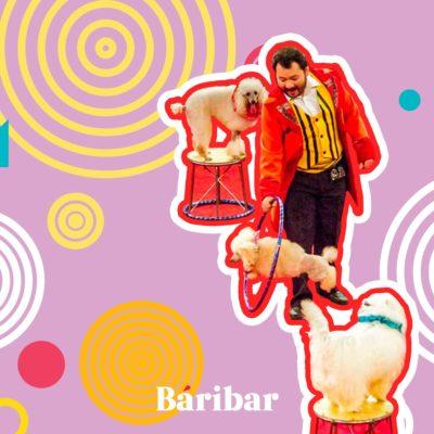 Цирк әртістері – Қоржумбаевтар әулеті цирк өнері, жануарлар мен оларды қолға үйрету туралы