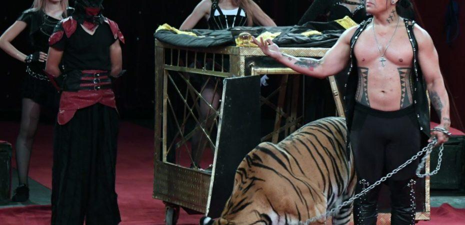 «Азия жаңғырығы» цирк фестивалінің жеңімпаздары Алматыға келді